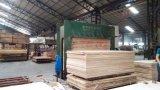 La Chine Le travail du bois Appuyez sur la machine à froid