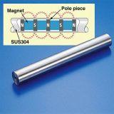 Diâmetro de 23 mm em aço inoxidável grau alimentício magneto da Haste