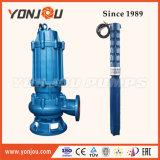 De binnenlandse Pomp Met duikvermogen Met duikvermogen van het Water van het Water Pump/30HP van de Toepassing van de Watervoorziening/de Pomp van het Water (QW/WQ)