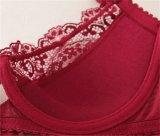 Delicada Línea larga de Lace Bra y Panty para señoras (FPY318)