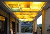 زاهي سقف مصباح شكل لأنّ فندق خارجيّ مع تأثير شفّانيّة