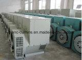 Générateur de pièces pour l'AC de l'alternateur Régulateur automatique de tension (AVR)