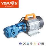 Pompa della benzina elettrica di pressione bassa