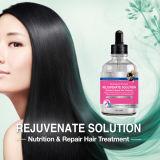 La protéine de rajeunir la solution biologique pour les cheveux après traitement chimique gravement endommagé