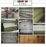 S0002 van uitstekende kwaliteit 10s ISO 300GSM maken de Stof van het Canvas waterdicht Ripstop