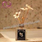120ml steuern Aroma-Luft-Erfrischungsmittel-REEDdiffuser (zerstäuber) in der Glasflasche mit Rattan-Stock Sola Blumen-REEDdiffuser- (zerstäuber)geschenk-Set automatisch an