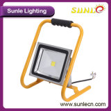 Éclairage portatif jaune d'inondation de l'ÉPI 50W DEL de traitement (SLFL-WT05)