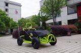 싼 경주가 가스 소형 Kart 모래 언덕 가는 공장 80cc는 아이를 위한 Kart 간다
