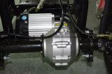 1000W 60V/20ah를 가진 3개의 바퀴 전기 스쿠터