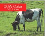 Indicatore di posizione di GPS, adatto a bovini ed ovini e l'altro grande inseguitore animale T500