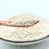 음식 보충교재 마그네슘 구연산염 조절 방출 펠릿