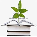 Rock Paper é um material de impressão verde sem madeira e livre de ácido