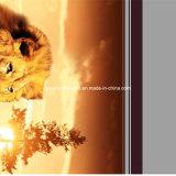 Löwen 100%Polyester und Leoparden Pigment&Disperse druckten Gewebe für Bettwäsche-Set