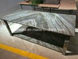Piedra de mármol natural con el panel de aluminio del panal para los vectores