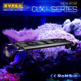 Großverkauf CREE 60 Zoll/150cm/216W intelligente verwendete LED Aquarium-Lichter des Mondschein-Korallenriff-