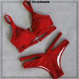 O melhor biquini feito sob encomenda de venda das mulheres do Swimwear da praia