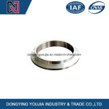 中国はステンレス鋼の鋳造リングのための鋳物場を経験した