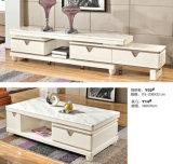 セットされるヨーロッパ様式の居間の家具(A610)