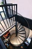 Modernos escalera de caracol Escalera de acero con pasamanos de acero inoxidable escalera