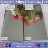 Euro gris réfléchissant + clair Float Glass / Colored en verre feuilleté de sécurité