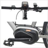 뚱뚱한 타이어 전기 자전거 또는 눈 타이어 전기 자전거 /26 X4.0 뚱뚱한 타이어 전기 눈 자전거