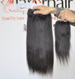 I capelli umani malesi non trattati dei capelli diritto 100% del Virgin dei prodotti per i capelli tessono il grado ondulato 9A