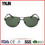 Professional Ynjn marca em sua própria ampla templos Mens óculos (YJ-F8415)