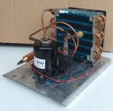 CC molto piccola 24V del compressore di refrigerazione di CC di Purswave St14DC24h per il mini dispositivo di raffreddamento di acqua Refrigeraor, condizionatore d'aria, compressore rotativo di raffreddamento di capienza 100~300W