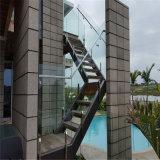 Diseño de cristal del pasamano de las espitas de acero para la barandilla interior de la escalera