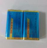 alkalische Batterie 6lr61 9V des Shrink-2PCS