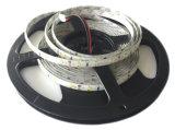 LED 지구 빛 걸이를 설치하십시오