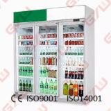 Cella frigorifera ambulante per visualizzazione