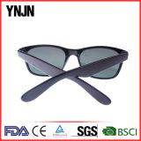Design clássico Ynjn Metal Hinge Retro Polycarbonate Sunglasses