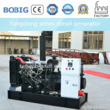 10kVA-30kVA diesel Generator die door Chinese Motor Yangdong wordt aangedreven