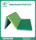 Anti-Slip 체조 지면 매트 운동 매트 적당 상업적인 체조 장비