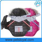 Собака любимчика зимы одевает вспомогательную куртку собаки