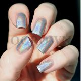Heißer Verkaufs-Laser-silberne ganz eigenhändig geschriebe Chrom-Pigmente für Nägel