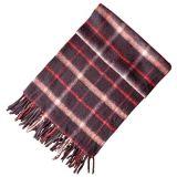 Длинний Striped шарф типа с Tassels (JRI013)