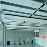 Künstlerische Aluminiumdecke mit Qualitäts-Fabrik-Preis