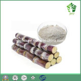 La fabbrica fornisce l'estratto naturale della cera della canna da zucchero di 100%