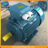 AC de moteur de phase de type trois de pied de fer de Y2-90L-4 2HP 1.5kwcast