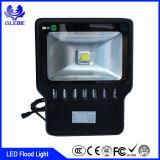Alto color del lumen que cambia la luz de inundación al aire libre de 10W RGBW LED