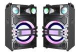 Double 10 pouces DJ Pro Audio Karaoke caisson d'enceinte Loud haut-parleur Bluetooth Radio FM