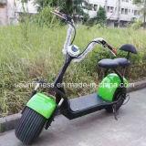 1000WモーターHarley 12ah/20ah電池が付いている電気都市ココヤシのスクーター