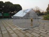 정원 (SW808)를 위한 취미 온실