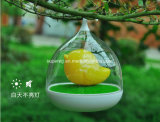 Birde Design Touch Sensor Vibration Birdcage Lamp