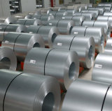 JIS G3312 SPCC laminó la bobina de acero para el material de construcción