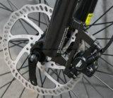 Bici inestable del motor impulsor E de Bafang para los señores con En estándar 15194 del producto europeo