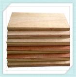 1220x2440mm Fabricante de madera contrachapada