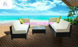 Удобный диван ротанга таблица мягкая мебель патио с видом на сад